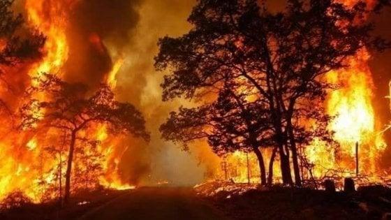 ORDINANZA N. 18 del. 01.06.2021 – Applicazione delle misure di prevenzione rischio incendi boschivi in vista del periodo di massima pericolosità per gli incendi boschivi.